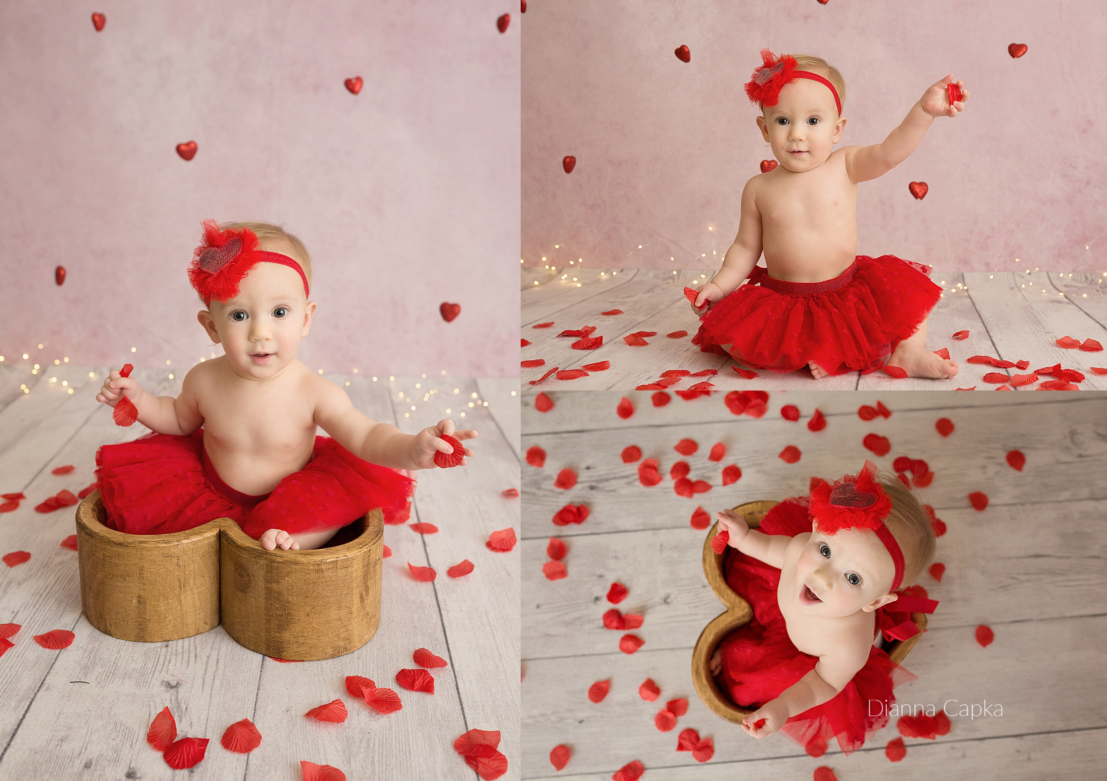 Valentine's mini session - evie Rose petals Lancaster PA baby photographer