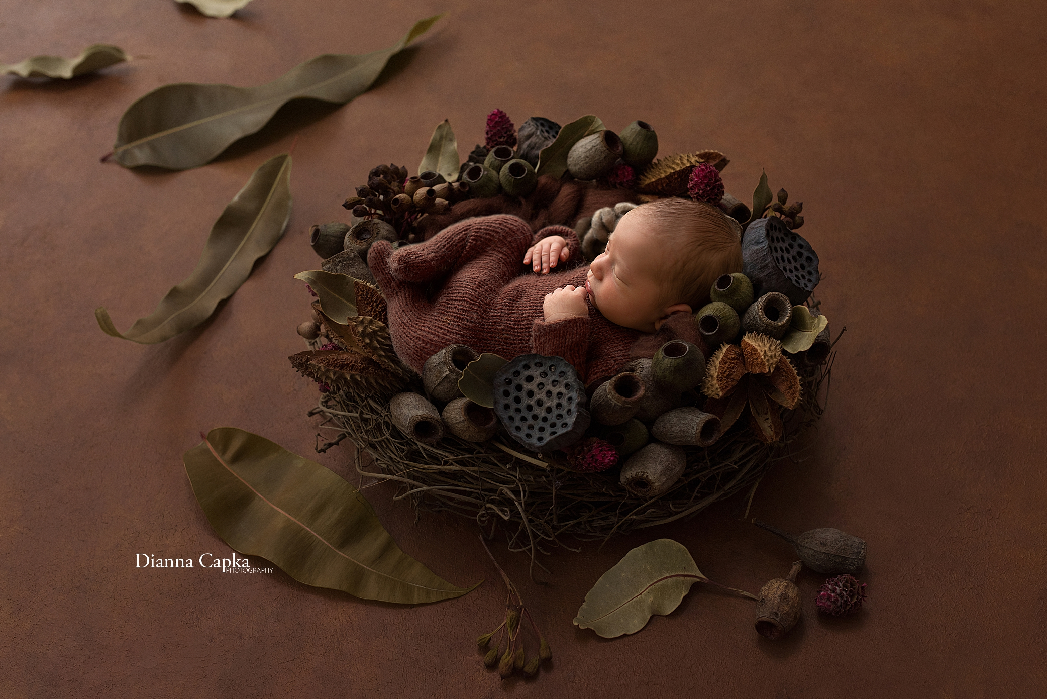 Central PA newborn photographer