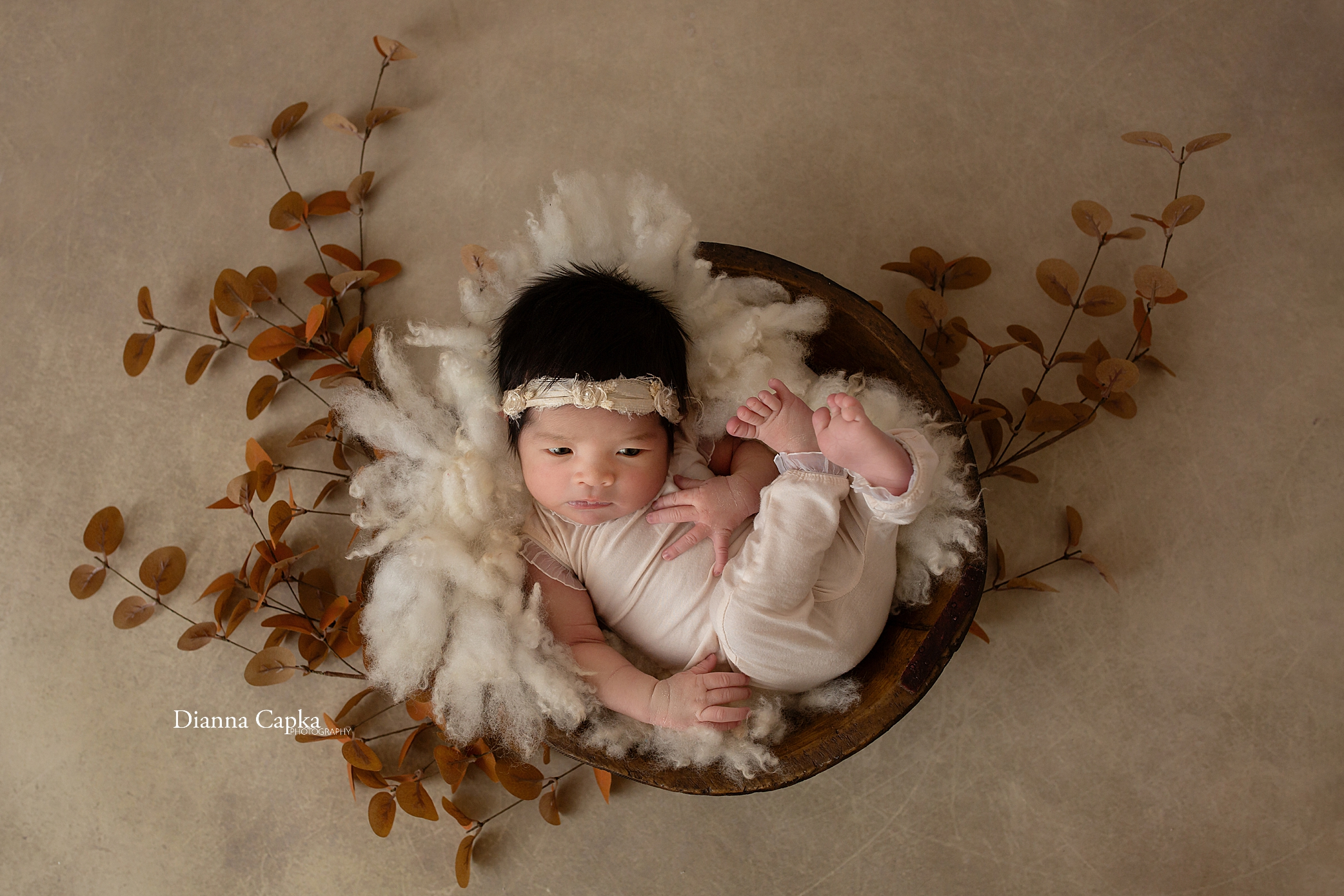 Lancaster newborn photographer pa