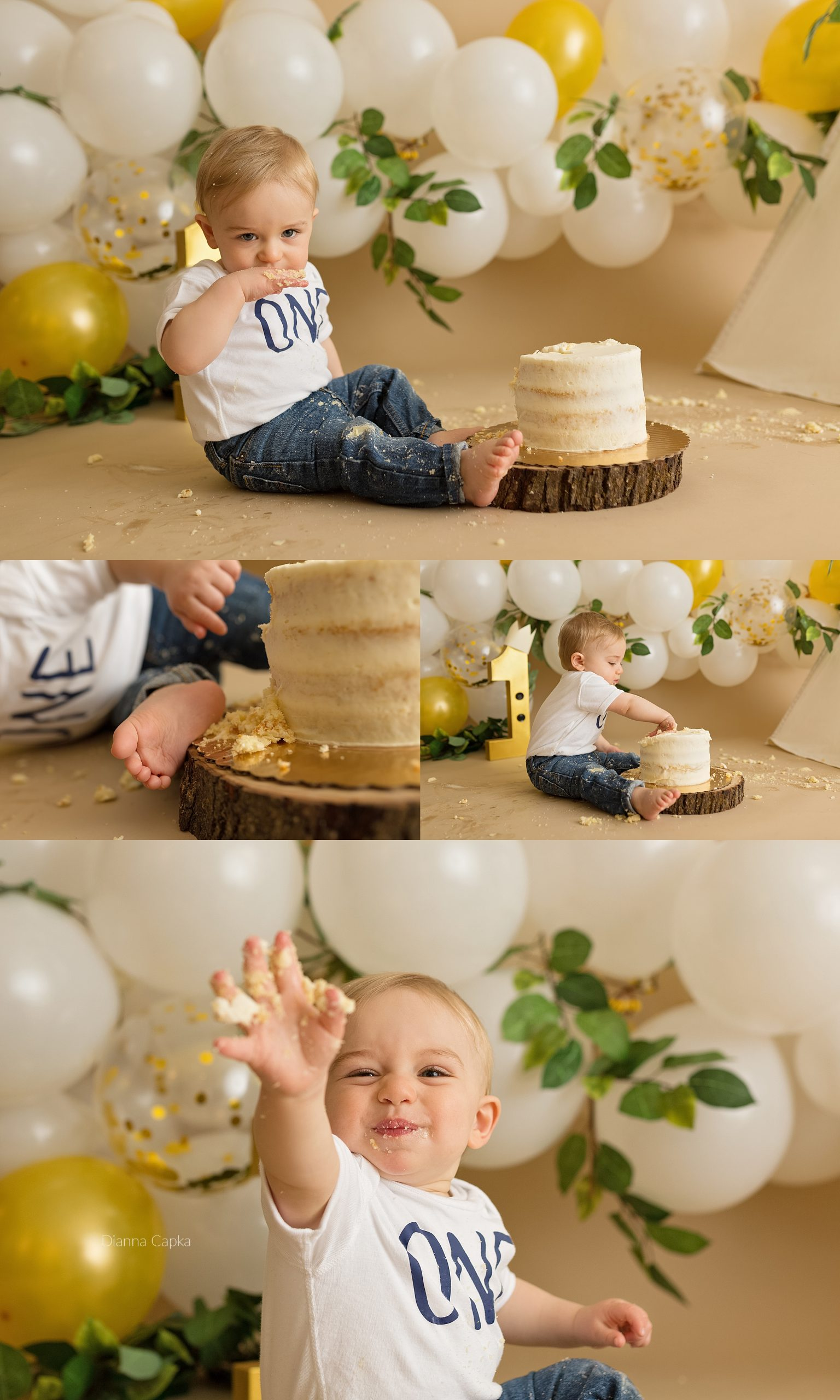 Wild Thing cake smash theme lancaster PA photographer one year photographer baby photographer cake smash photographer