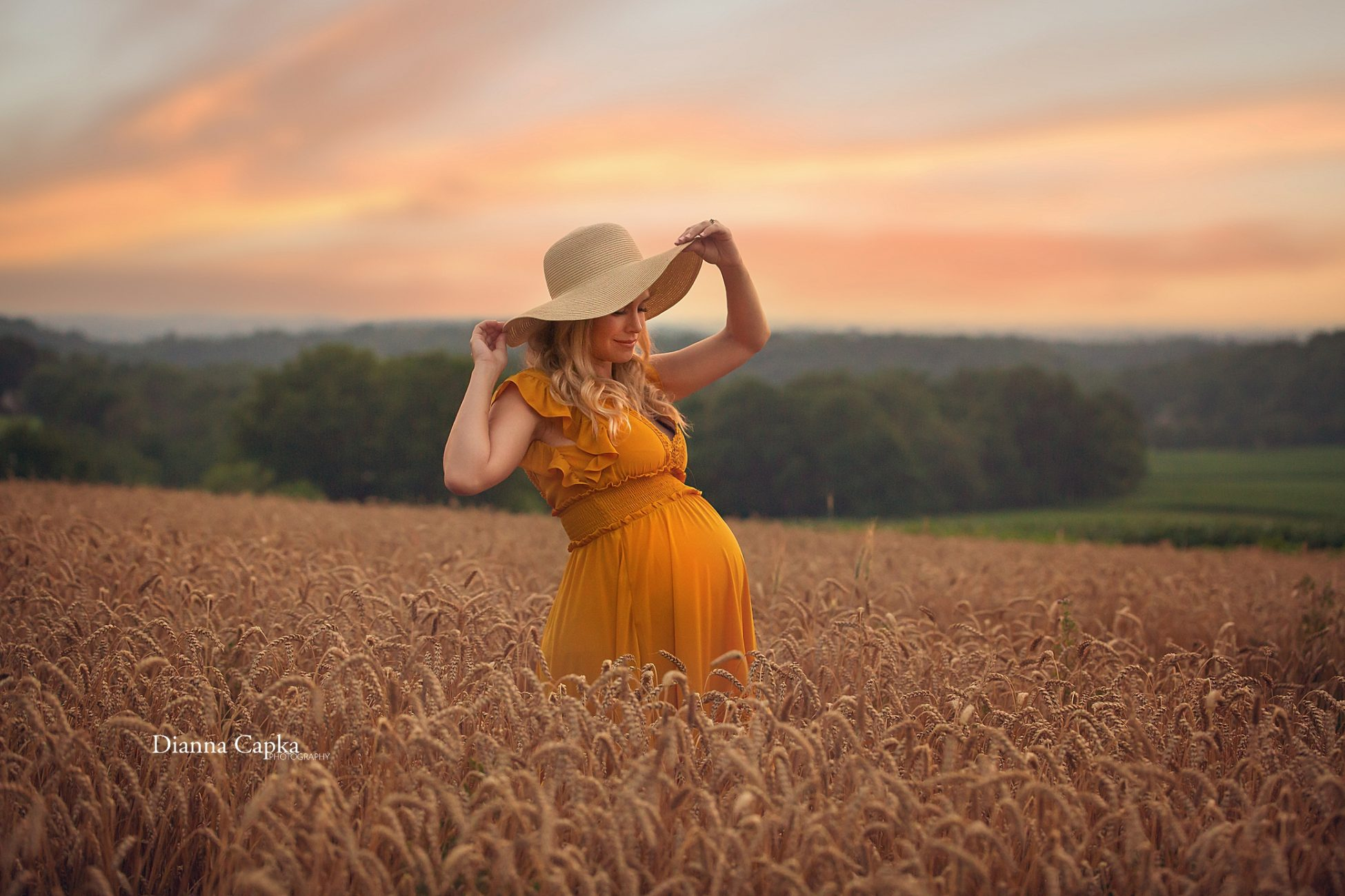 wildflower maternity session wildflower lookout ronks pa lanaster pa photographer